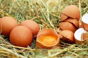 kako-prepoznati-pokvarena-jaja